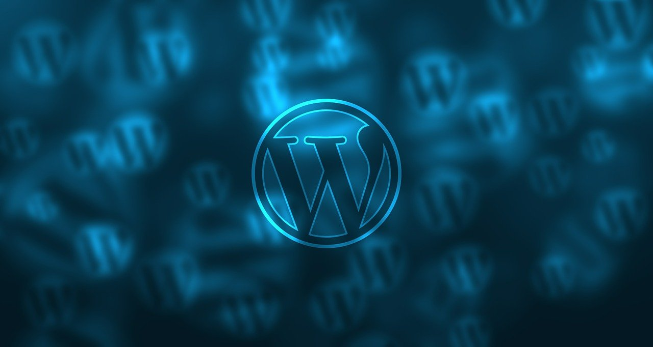 WordPress CMS Info Tips and History